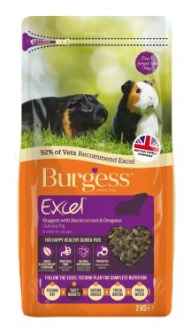 BURGESS GUINEA PIG FOOD WITH BLACKCURRANT