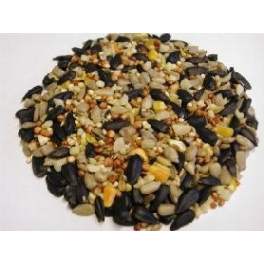 Hi-Energy Wild Bird Food